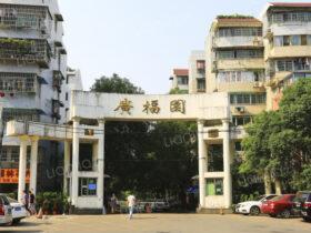 广福园菜鸟驿站