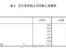 国家统计局:农民工月均收入4072元
