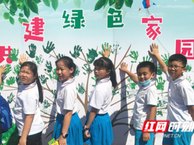 长沙市开福区欣城社区:两型全民行动,共创绿色家园